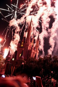 Disney World (43)